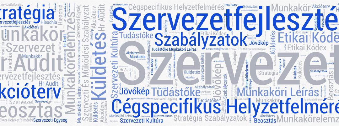 SZAKMAI SZÓTÁR | MI IS AZ A SZERVEZET?